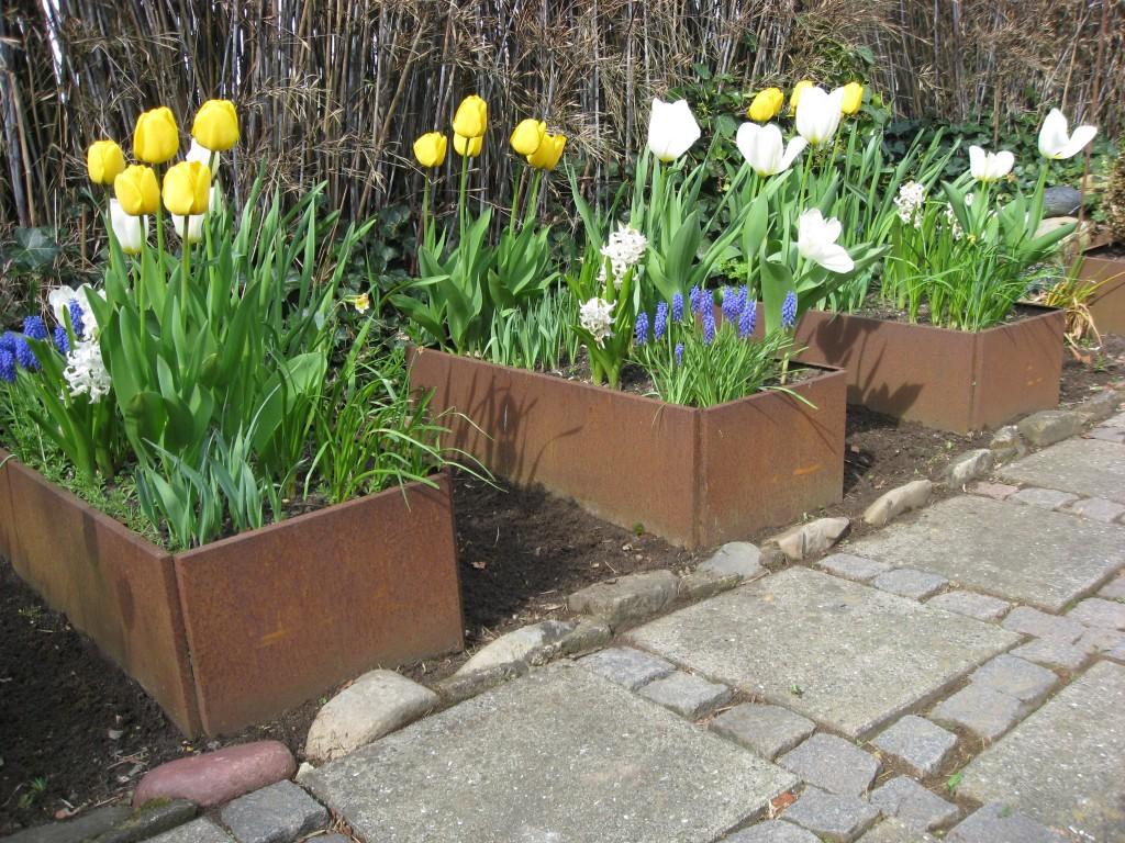 blomsterkasser med forårsblomster